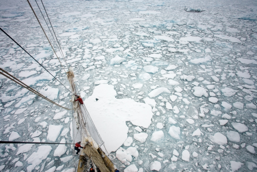 The schooner sailing ship Noorderlicht, photographed from the mast, amidst broken glacial ice in Barclay Sound on East Greenland. The ship is home to artists, scientists and broadcasters who have joined an expedition organised by Cape Farewell. Together they plan to provoke debate, research and discussion about climate change -the organisation calls itself 'the cultural response to climate change'