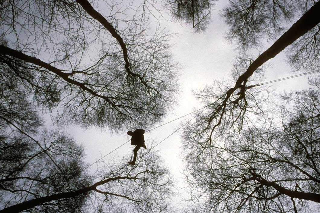 A protester walks along an aerial walkway high in the trees.