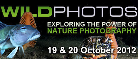 Advert for Wildphotos 2012